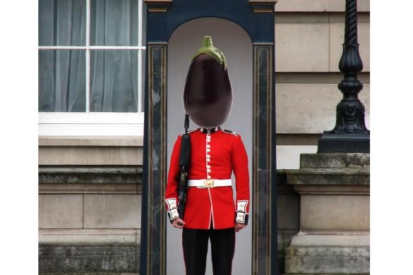 Aubergine Guard
